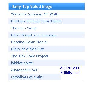 #2 on BlogMad