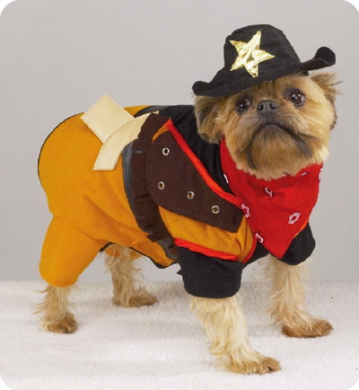 cowboy dog & More animals in Halloween costumes | Political Teen Tidbits