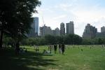 part-of-central-park